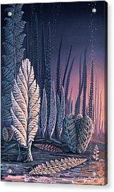 Pre-cambrian Life Forms Acrylic Print