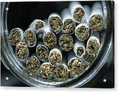 Pre-rolled Medical Cannabis Joints Acrylic Print by Stock Pot Images