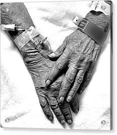 Precious Hands Acrylic Print