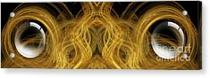 Precious Metal Frog Prince Panorama Acrylic Print by Andee Design