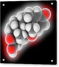 Prednisone Drug Molecule Acrylic Print by Laguna Design