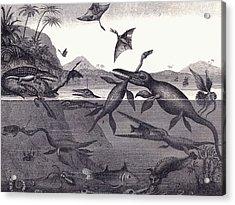 Prehistoric Animals Of The Lias Group Acrylic Print