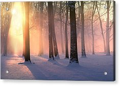 Presence Of Light Acrylic Print