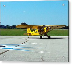 Preston Aviation Piper Cub  Acrylic Print