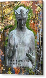 Acrylic Print featuring the photograph Pretend A Virtue by Patricia Januszkiewicz