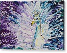 Pretty As A Peacock Acrylic Print by Jessica Keith