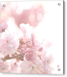 Pretty In Pink - The Confetti Acrylic Print