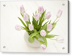 Pretty In Pink Acrylic Print by Anne Gilbert
