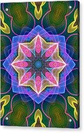 Acrylic Print featuring the digital art Pretty by Owlspook