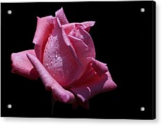 Acrylic Print featuring the photograph Pretty Pink by Doug Norkum