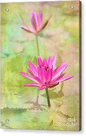 Pretty Pink Ladies Acrylic Print by Sabrina L Ryan