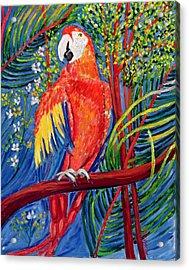 Pretty Polly Acrylic Print