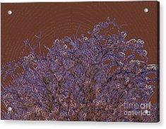 Pretty Tree Acrylic Print by Carol Lynch