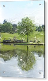 Pretty Tree In Park Picture.  Acrylic Print by Christopher Rowlands