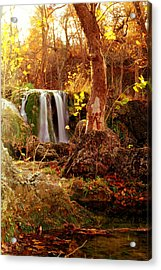 Acrylic Print featuring the photograph Price Falls 2 Of 5 by Jason Politte