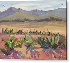 Prickly Pear Cactus Ranch Acrylic Print by Suzanne Elliott