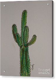 Prickly Saguaro Acrylic Print by Marcia Weller-Wenbert