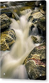 Priest Creek Acrylic Print