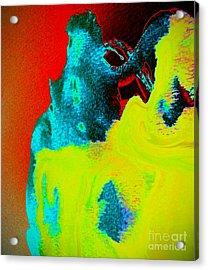 Primary Acrylic Print
