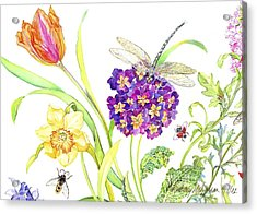 Primrose And Dragonfly Acrylic Print by Kimberly McSparran