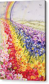 Primrose Rainbow Acrylic Print by Joan Thewsey