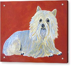 Acrylic Print featuring the painting Prissy by Suzanne Theis