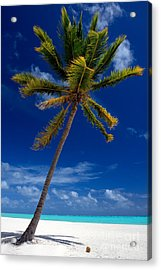 Pristine Tropical Beach  Acrylic Print by Karen Lee Ensley
