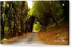 Private Property Acrylic Print by Sharon Costa