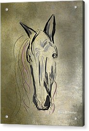 Profile Of A White Horse Acrylic Print by Angela A Stanton