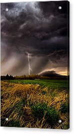 Profound Acrylic Print by Phil Koch