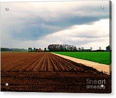 Promissing Field Acrylic Print