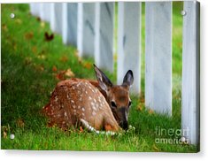 Protecting Our Heros Acrylic Print by Peggy Franz