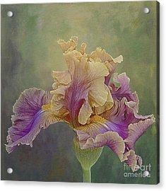 Proud Iris Acrylic Print by Vicki DeVico