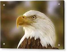 Acrylic Print featuring the photograph Proud Symbol Of A Nation  by Brian Cross