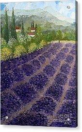 Provence Lavender Fields  Acrylic Print