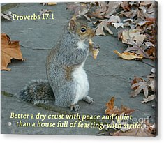 Proverbs 17-1 Acrylic Print by Emmy Marie Vickers