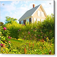 Provincetown Cottage With Green Brown And Pink Acrylic Print