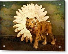 Prowling Acrylic Print by Jeff  Gettis