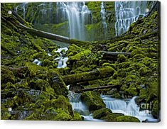Acrylic Print featuring the photograph Proxy Falls by Nick  Boren