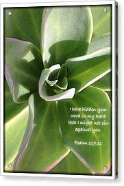 Psalm 119 19 Acrylic Print