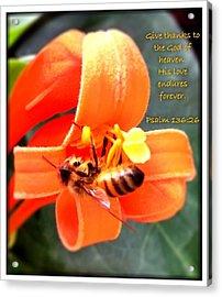 Psalm 136 26 Acrylic Print