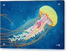 Psychadelic Jelly Acrylic Print by Jeff Lucas