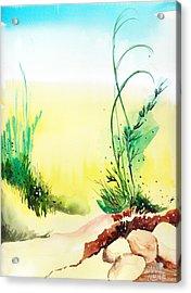 Psychedelic Acrylic Print by Anil Nene