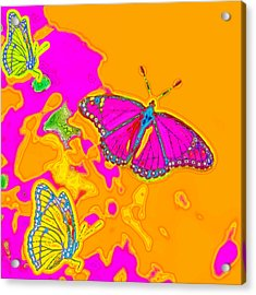 Psychedelic Butterflies Acrylic Print by Marianne Campolongo