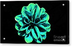 Acrylic Print featuring the photograph Psychedelic Flower 5 by Sarah Mullin