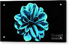 Psychedelic Flower 9 Acrylic Print by Sarah Mullin