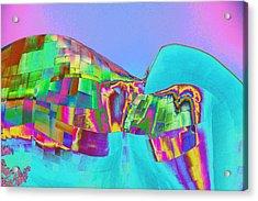 Psychedelic Hendrix Hall Acrylic Print