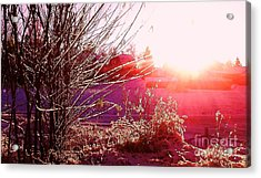 Acrylic Print featuring the photograph Psychedelic Winter   by Martin Howard