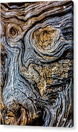 Acrylic Print featuring the photograph Psychedelic Wood by Beverly Parks