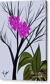 ptg   Window Orchid Acrylic Print